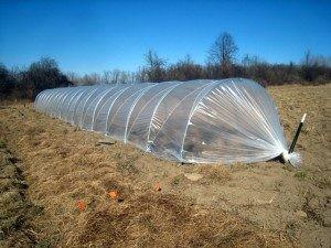 Plastico para Estufa tipo Tunel Cristal NORTENE 2,2X500 REF150 107 kg